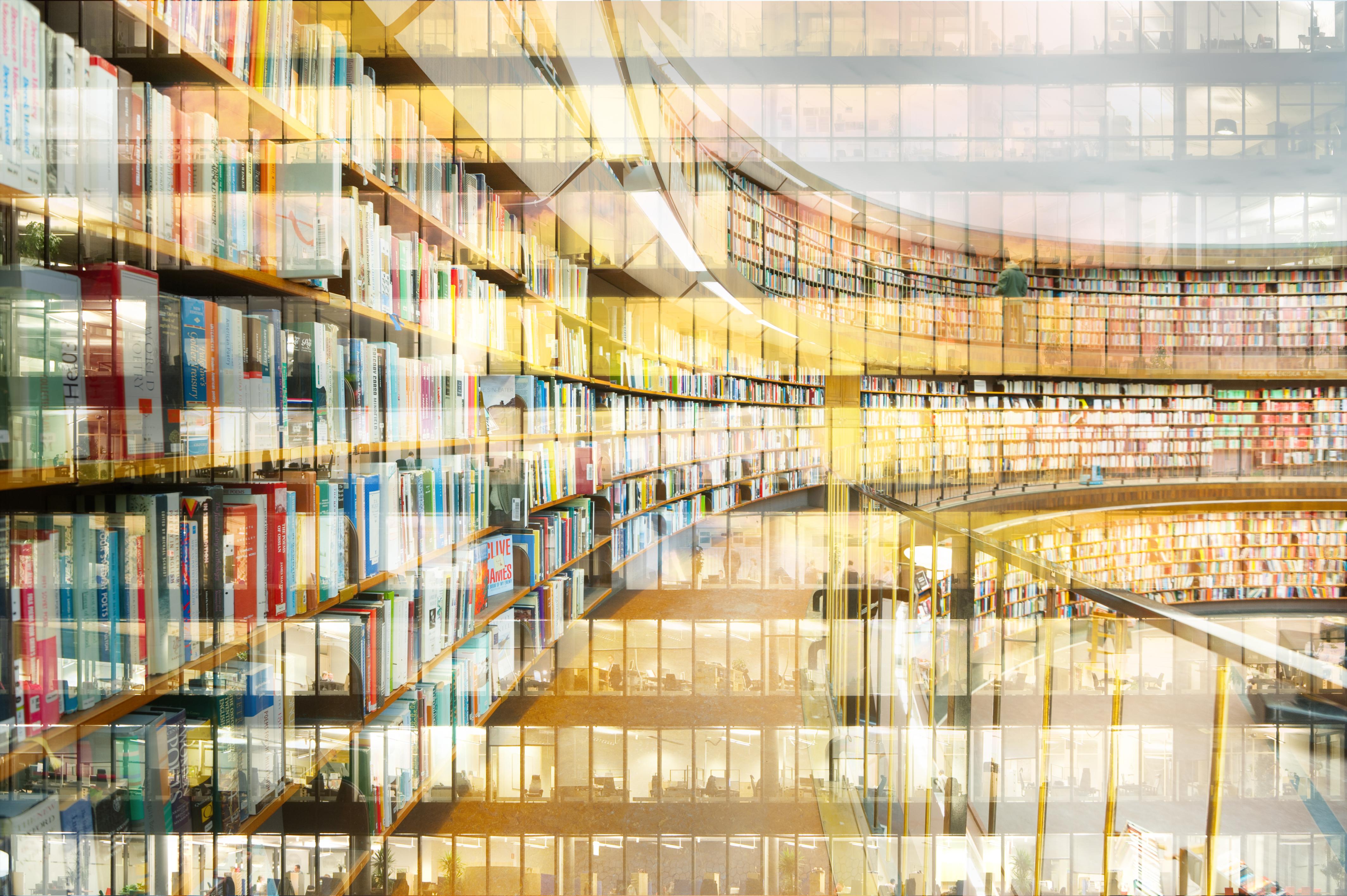 LIVESTREAM: Library Science Talks: Matthijs van Otegem, Erasmus University Library Rotterdam