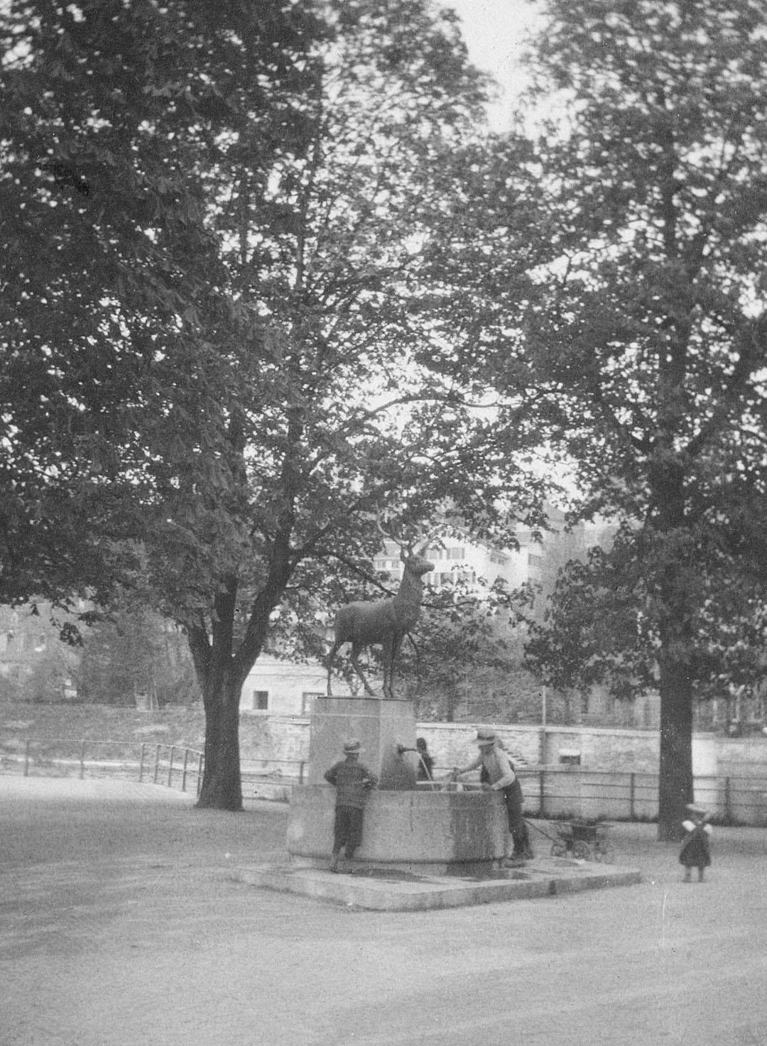Der Hirschenbrunnen im Platzspitz. Eine anonyme Fotografie, entstanden nach 1911.
