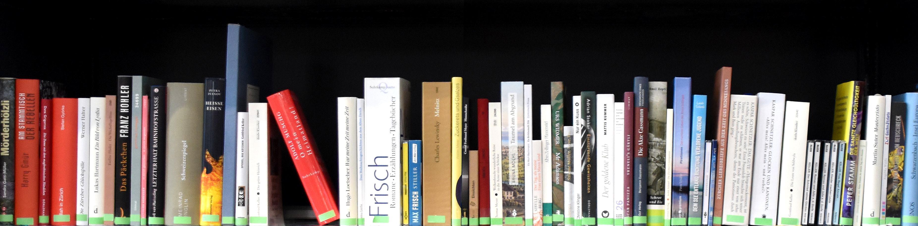 Zürich Literatur