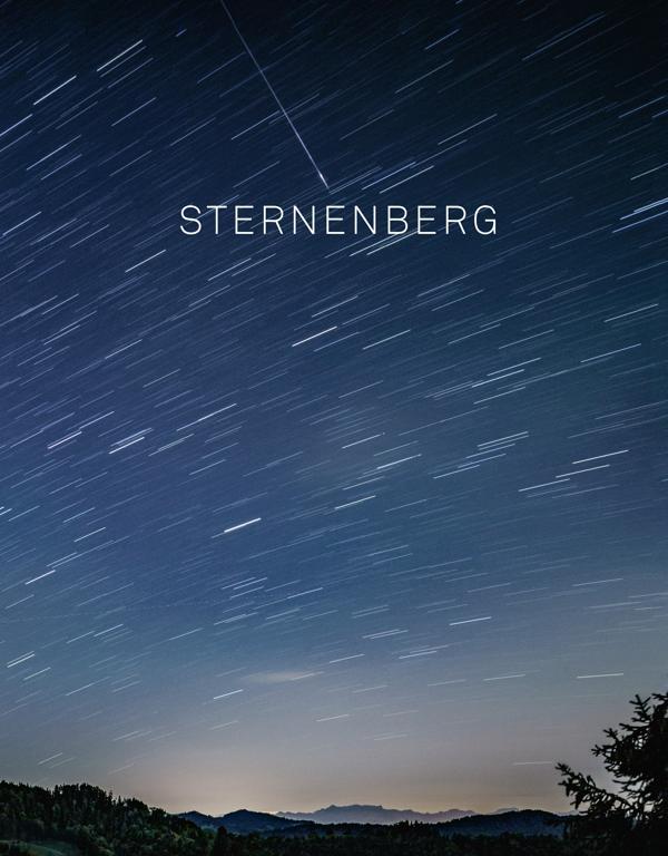 «Sternenberg», M. Brühlmeier, U. Eichenberger, T. Kawara, Zürich 2019, Signatur: 2019 C 11146