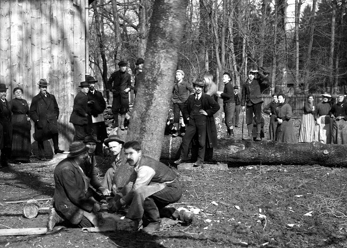 Männer schlagen und sammeln Holz im Stadtpark Sihlhölzli
